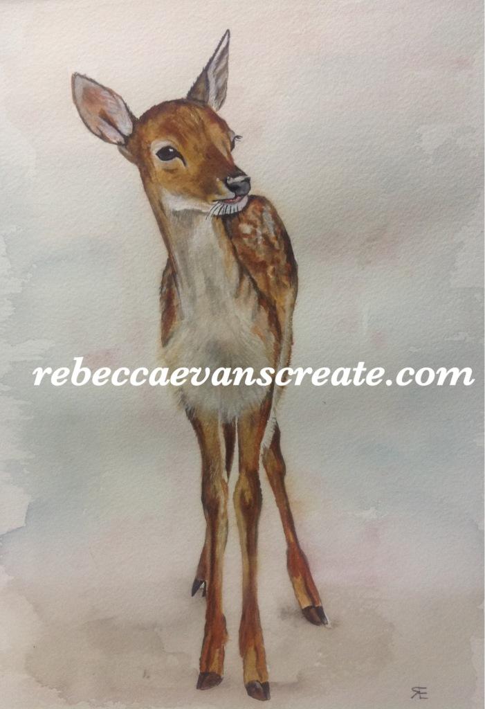 Rebecca evans create art Fallow deer A5 watercolour for Charlie's #naturedoodlewash