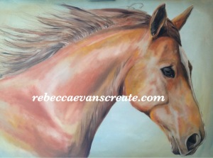 'Chico' oil on canvas 70cmx50cm Rebecca evans create art