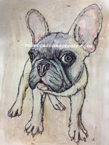'Scribble' French bull dog. (inspiration on sktchy app) ink and watercolour on kaolin clay coated watercolour paper A3