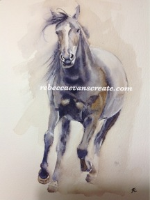 'Bettie' new forest pony, watercolour A4 140 lb cold press