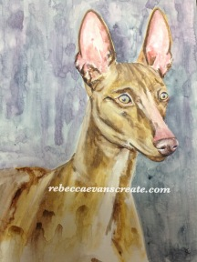 Sicilian greyhound on handmade claybord and watercolour. A3