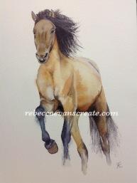 "'Pony power 2' arches cold press 140 lb 9x12"" watercolour"