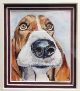 'Hound of love' 12cmx14cm watercolour