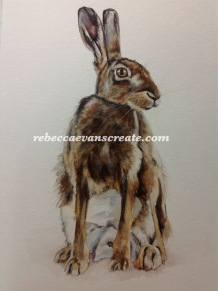 30x40cm 200lb coldpress 'seated hare' watercolour