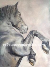 "'Atrasus' watercolour rearing horse, 140lb coldpress 16x12"""