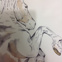 'Atrasus' watercolour horse