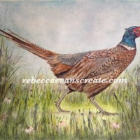 'Meandering in the meadow' pheasant art