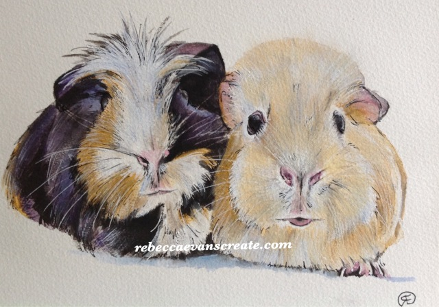 "'Perfect pair' watercolour and pen Guinea pigs 10x7"" 140 lb coldpress. These two cuties belong to a patient at work, they visit daily, and I could not resist painting the pair, the painting is now on her room wall"