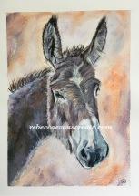 """'Ready brek' Watercolour 10x14"""" 140lb coldpress, image A4"""