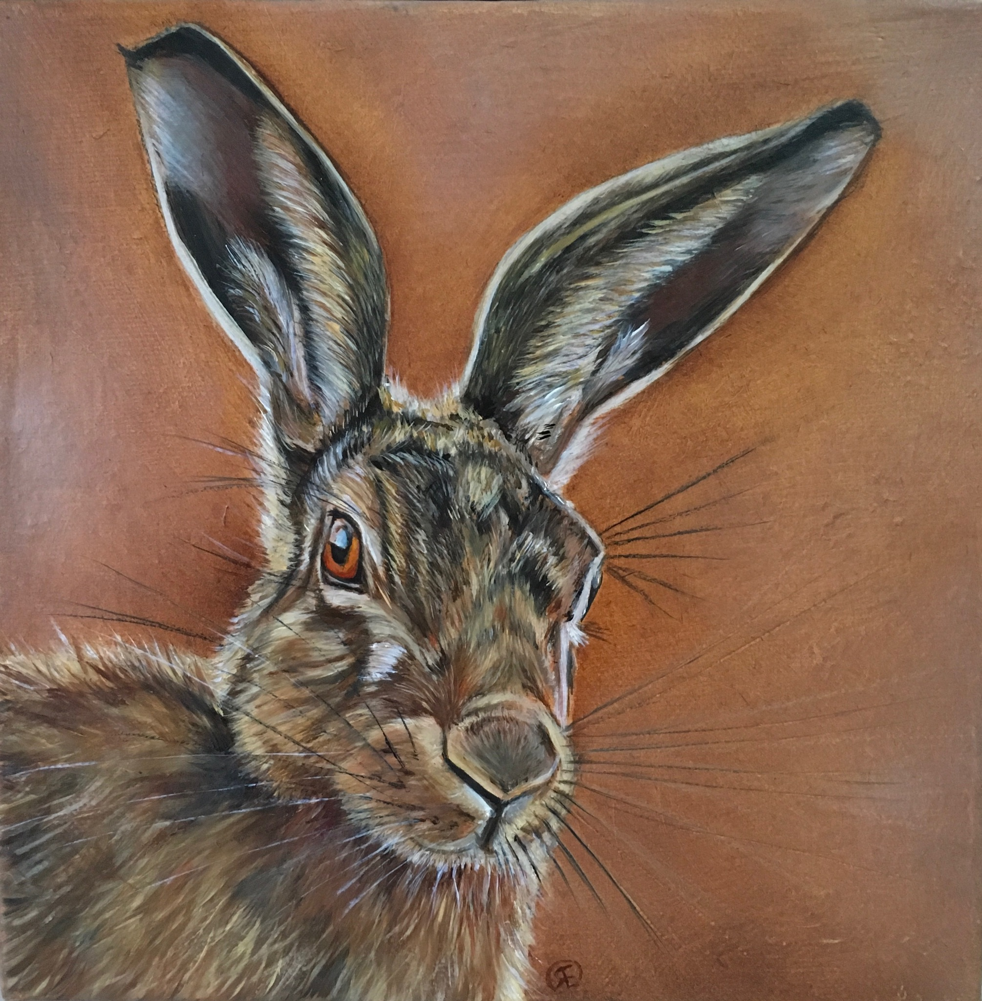 'Henrick' oil hare 20x20 cm for oakhaven hospice charity auction twenty/20 during Hampshire open studio August 2018. Bid for your chance to win by contacting the fundraising department at oakhaven hospice. Photograph reference by Warren Etherington, many thanks.