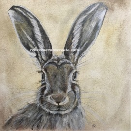 Hare pencil sketch, graphite pencils and cretacolor oil pencil set on watercolour paper 140lb 23x23 cm