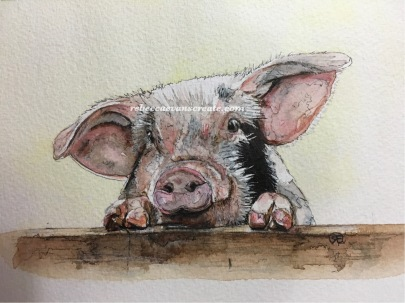 Ink and watercolour pig study/sketch