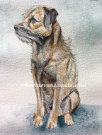Border terrier ink and wash mini painting watercolour