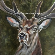 Oil painting of stag study