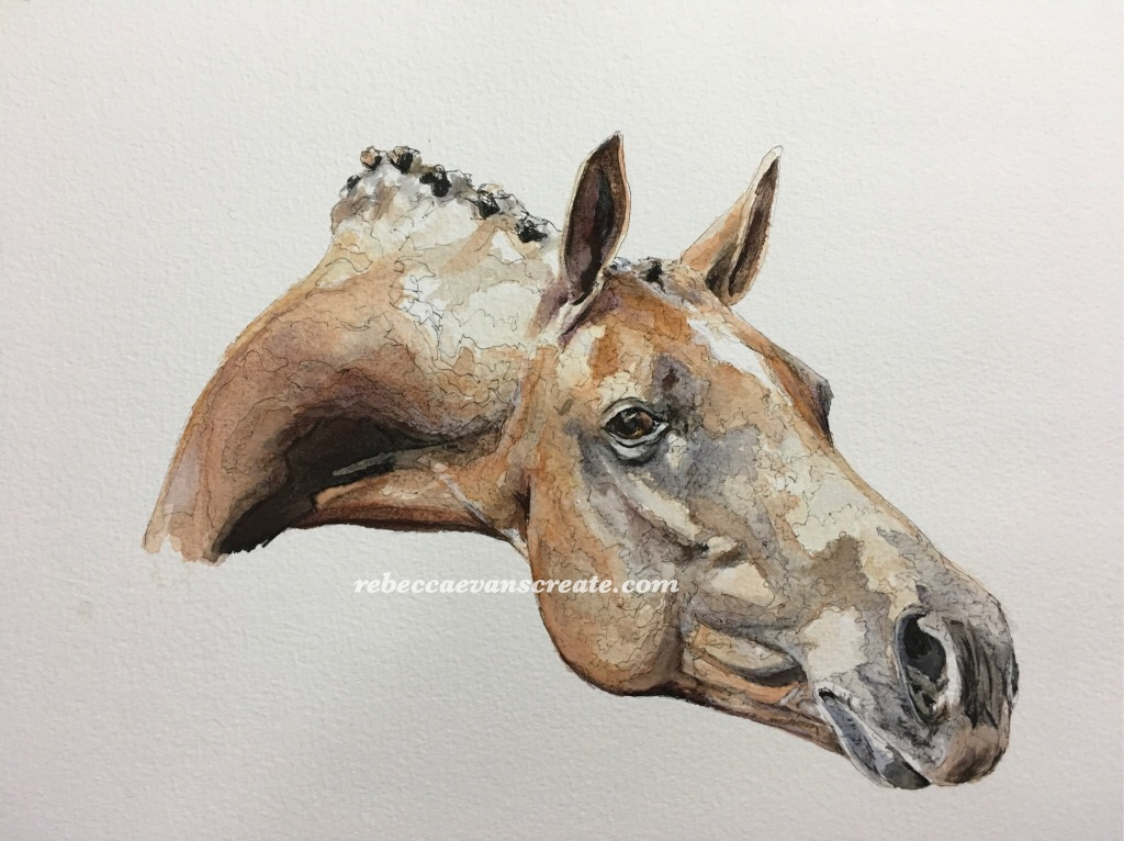 'Show me the prize' watercolour