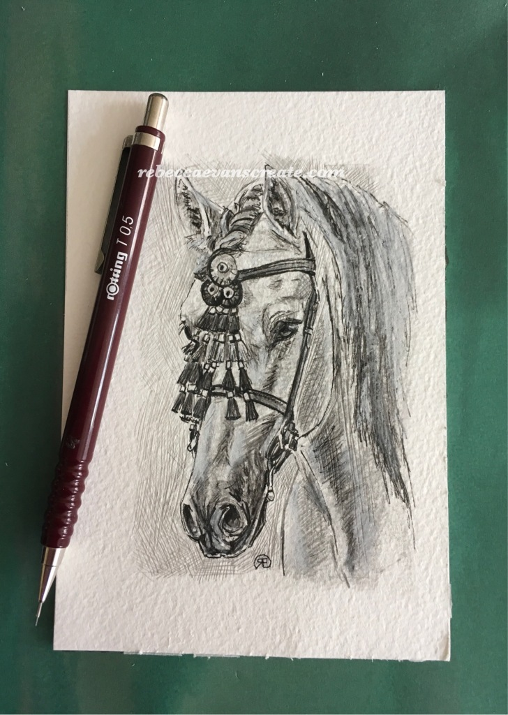 'PRE Andalusian study' graphite and ink