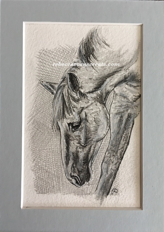 'Grazing study' graphite and ink